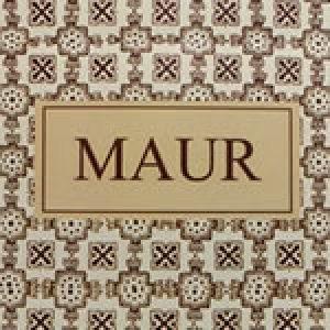 wifi-para-restaurantes-Maur